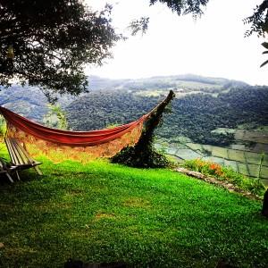 A vista da vinícola Estrelas do Brasil