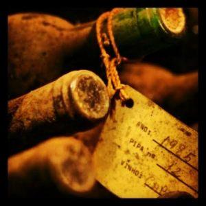 vinhos velhos